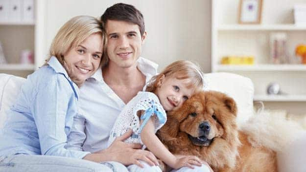 Wills & Trusts dog-young-family Direct Wills Norfolk